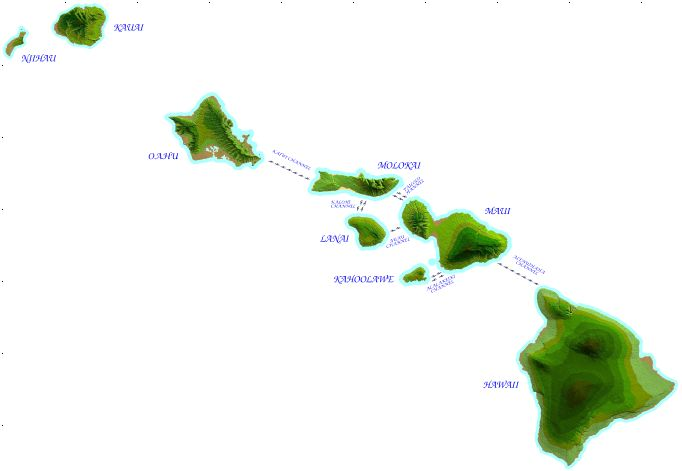 Hawaii Islands Drawing Swimming From One Island to